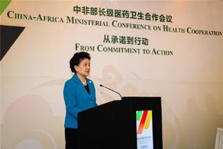 刘延东出席中非部长级医药卫生合作会议