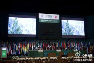 联合国森林论坛第十二届会议在纽约召开